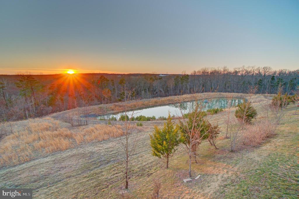 Sunset view of pond and trees! - 20639 ERSKINE TER, ASHBURN