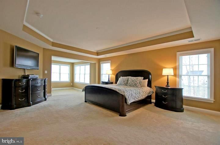 Owner's Bedroom with Sitting area - 4210 BURKE STATION RD, FAIRFAX