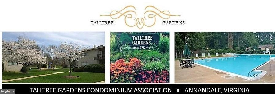 TallTree South with community pool - 4917 AMERICANA DR #E, ANNANDALE
