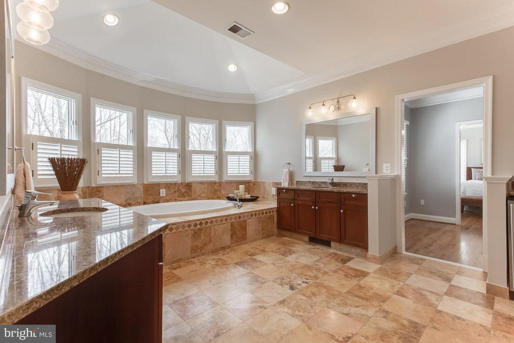 Master bath, separate sink and dressing areas - 121 SINEGAR PL, STERLING