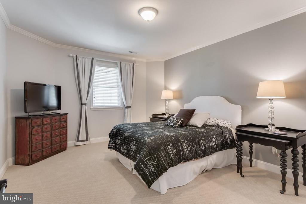 Lower level bedroom 5 - 121 SINEGAR PL, STERLING