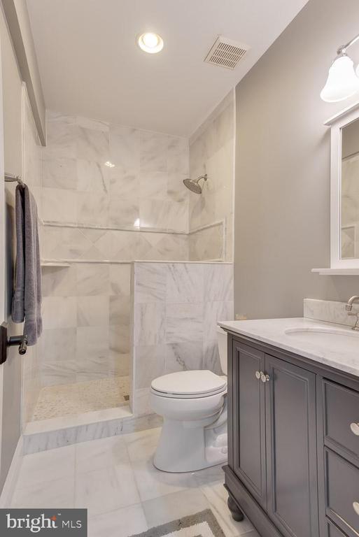 Lower level bath - 121 SINEGAR PL, STERLING