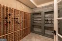 Lower level wine cellar - 121 SINEGAR PL, STERLING