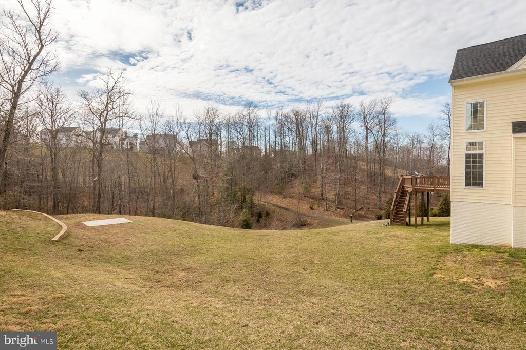 Yard big enough for plenty of outdoor activities - 18487 KERILL RD, TRIANGLE