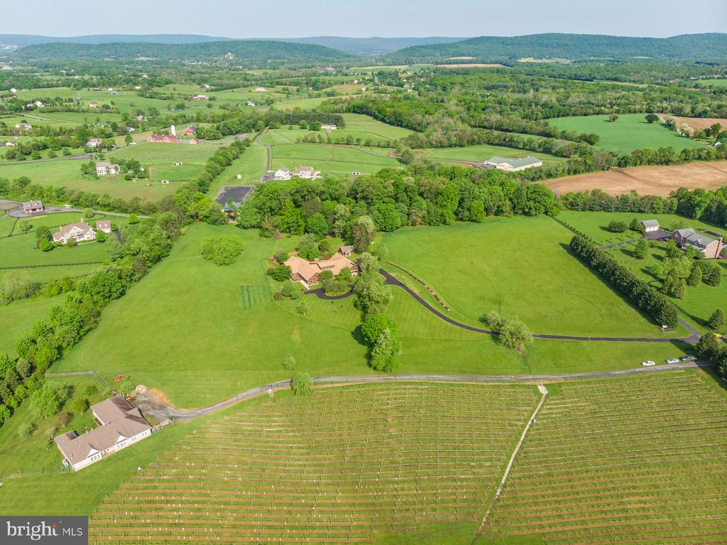 Virginia  Wine Country at its Best! - 38581 DAYMONT LN, WATERFORD