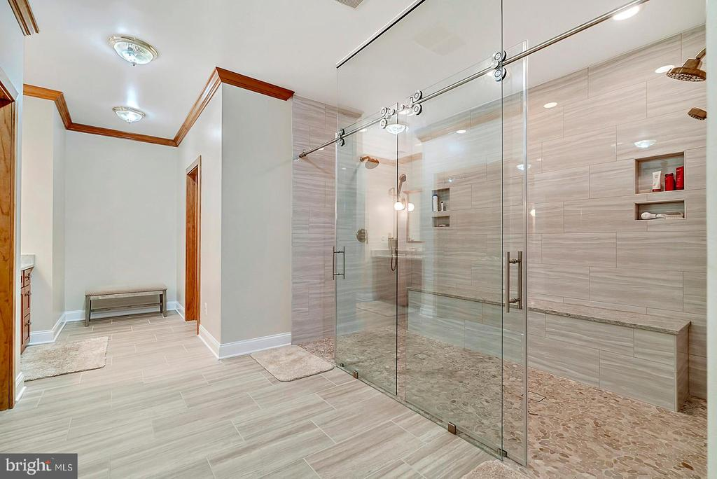 Another View of the Owner's Bath to Die for! - 38581 DAYMONT LN, WATERFORD
