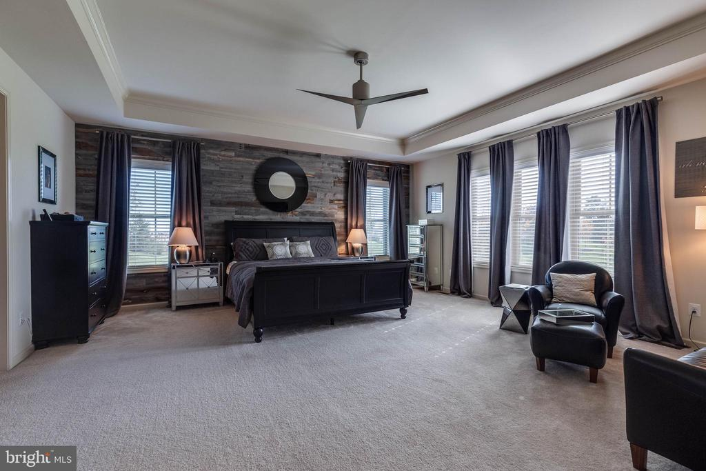 Spacious Master Bedroom - 42231 AMBER MEADOWS LN, BRAMBLETON