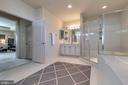 Master Bathroom - 42231 AMBER MEADOWS LN, BRAMBLETON