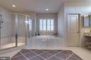 Luxury Master Bathroom - 42231 AMBER MEADOWS LN, BRAMBLETON