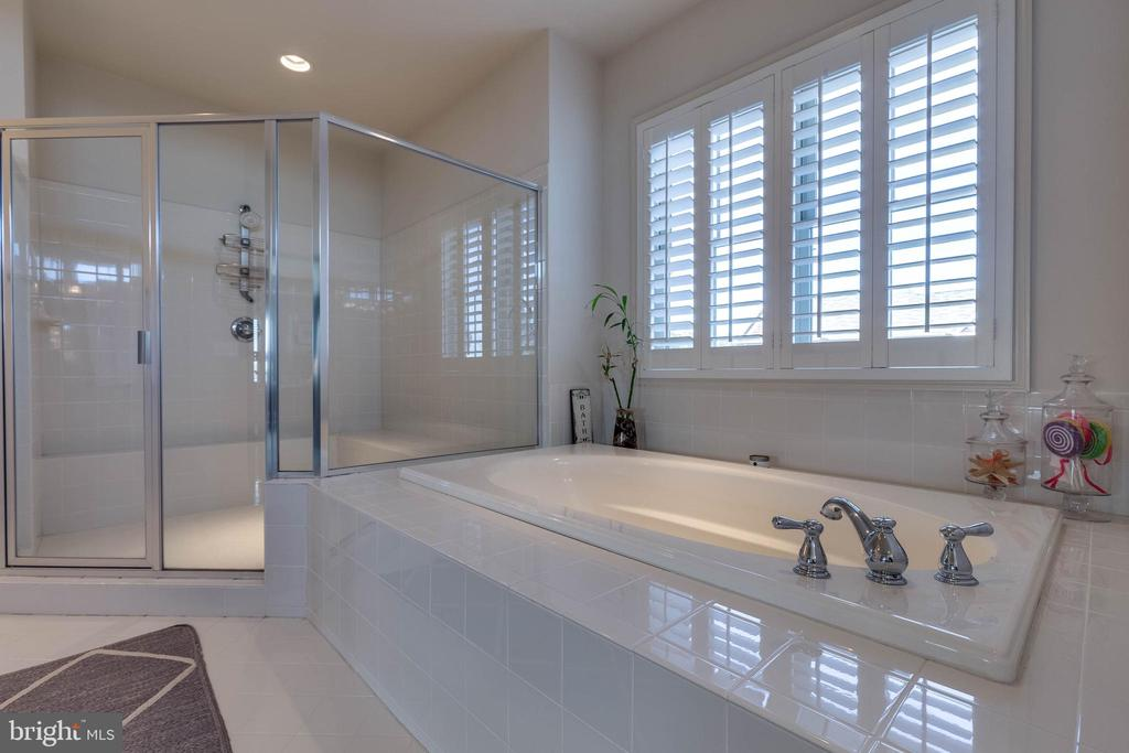 Master Bath Soaking Tub & Shower - 42231 AMBER MEADOWS LN, BRAMBLETON