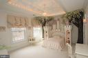 Enter the enchanted forest with the castle bed - 529 SPRINGVALE RD, GREAT FALLS
