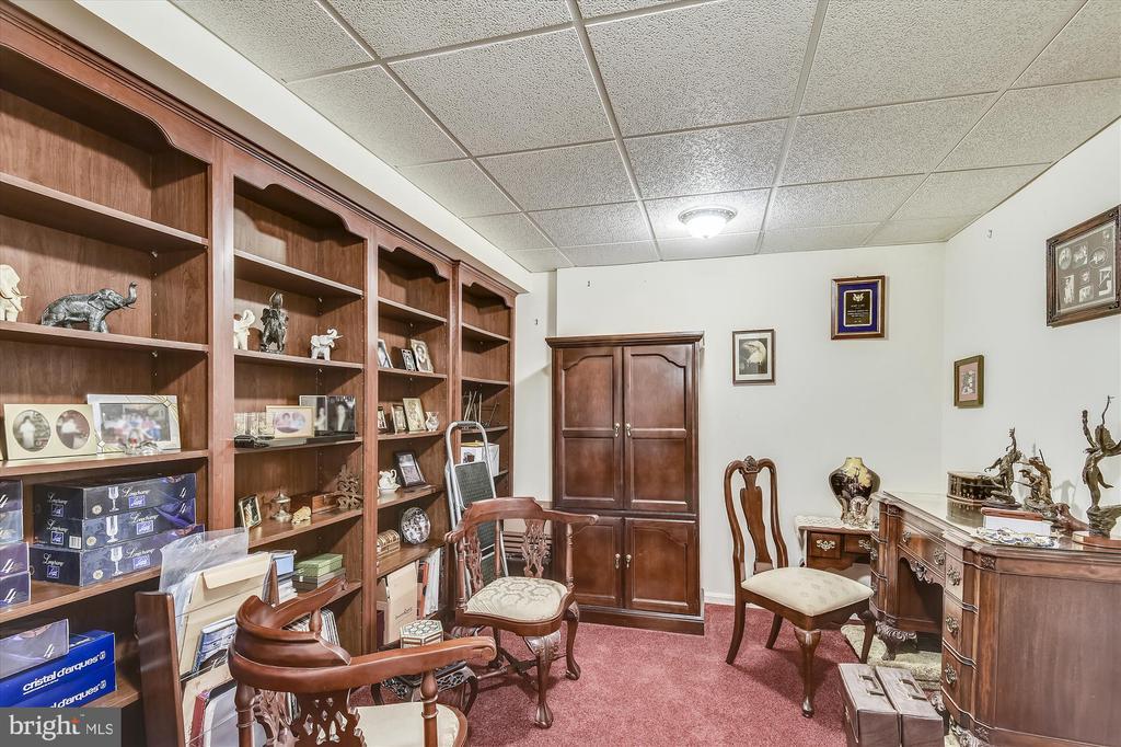 LL has so many rooms! - 4572 SHETLAND GREEN RD, ALEXANDRIA