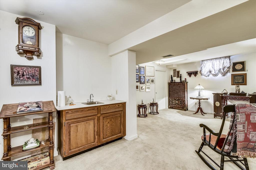 Lower Level goes on and on! - 4572 SHETLAND GREEN RD, ALEXANDRIA