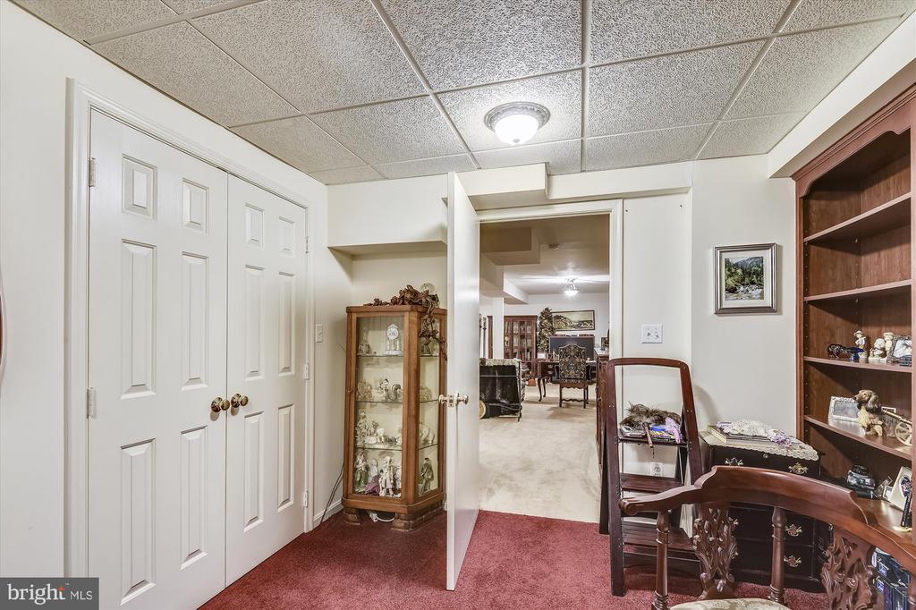 Lower Level has many rooms! - 4572 SHETLAND GREEN RD, ALEXANDRIA