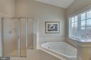 Dual sink & separate tub & shower in master bath - 42760 RIDGEWAY DR, BROADLANDS