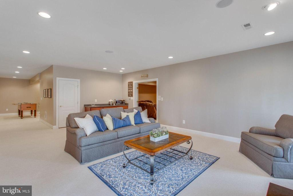 Large family room in basement w/fire place - 42760 RIDGEWAY DR, BROADLANDS