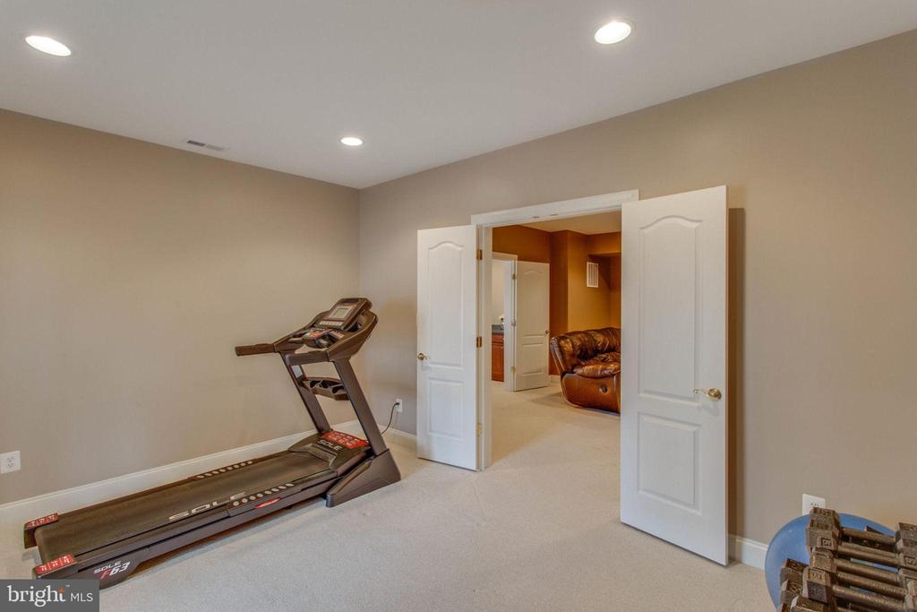 Bonus room used as home gym - 42760 RIDGEWAY DR, BROADLANDS