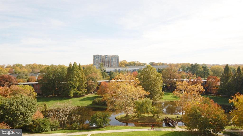 Fantastic Park View - 10201 GROSVENOR PL #818, NORTH BETHESDA