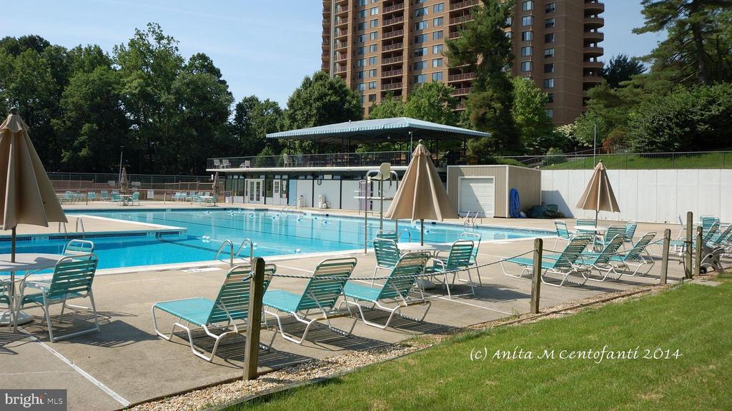 Fabulous Pool - 10201 GROSVENOR PL #818, NORTH BETHESDA