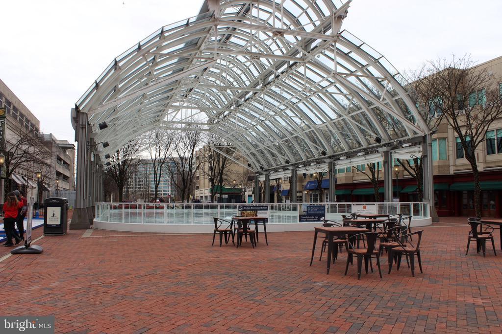 Ice Rink at Reston Town Center - 12171 TRYTON WAY, RESTON