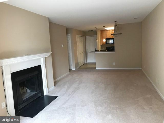 New carpet and all new fresh paint - 10303 APPALACHIAN CIR #9-304, OAKTON