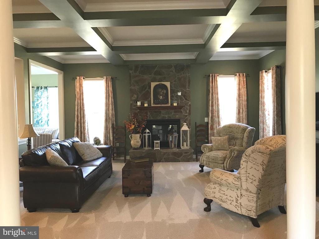 Coffered ceiling in family room. - 6 SCARLET FLAX CT, STAFFORD