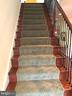 Beautiful stairs with iron rails. - 6 SCARLET FLAX CT, STAFFORD