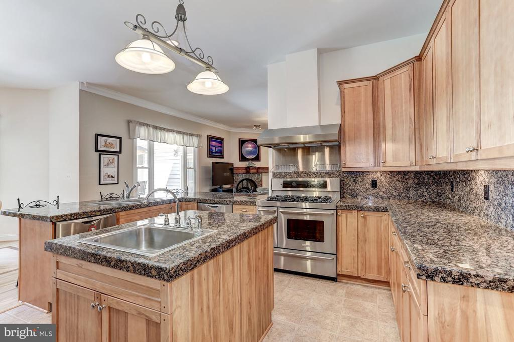 Island has additional sink with disposal - 6910 SCENIC POINTE PL, MANASSAS