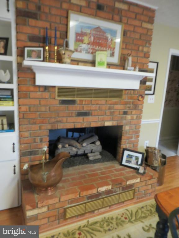 Look thru Fireplace - 200 HAPPY CREEK RD, LOCUST GROVE