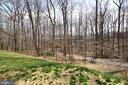 View of Woods and Walking Trails. - 11623 VANTAGE HILL RD #1A, RESTON
