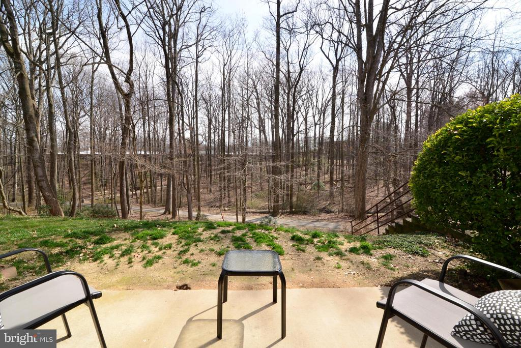 Enjoy Sitting on Your Patio. - 11623 VANTAGE HILL RD #1A, RESTON