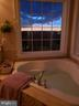 Relax in your tub while enjoying the gorgeous view - 20639 ERSKINE TER, ASHBURN