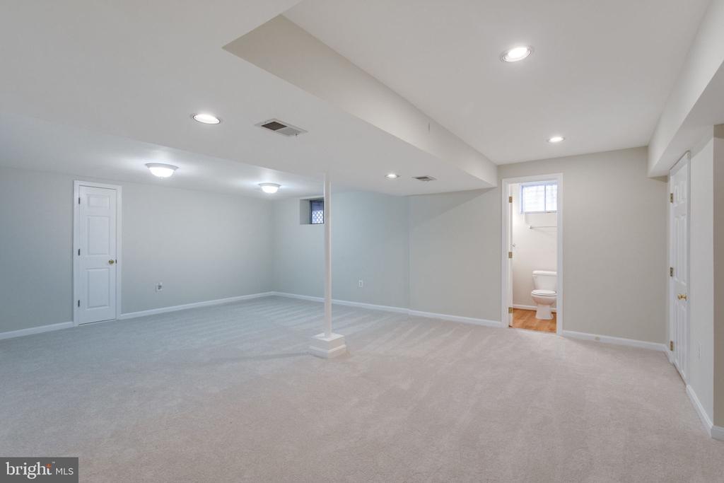 Finished basement wt Den. - 6536 NOVAK WOODS CT, BURKE