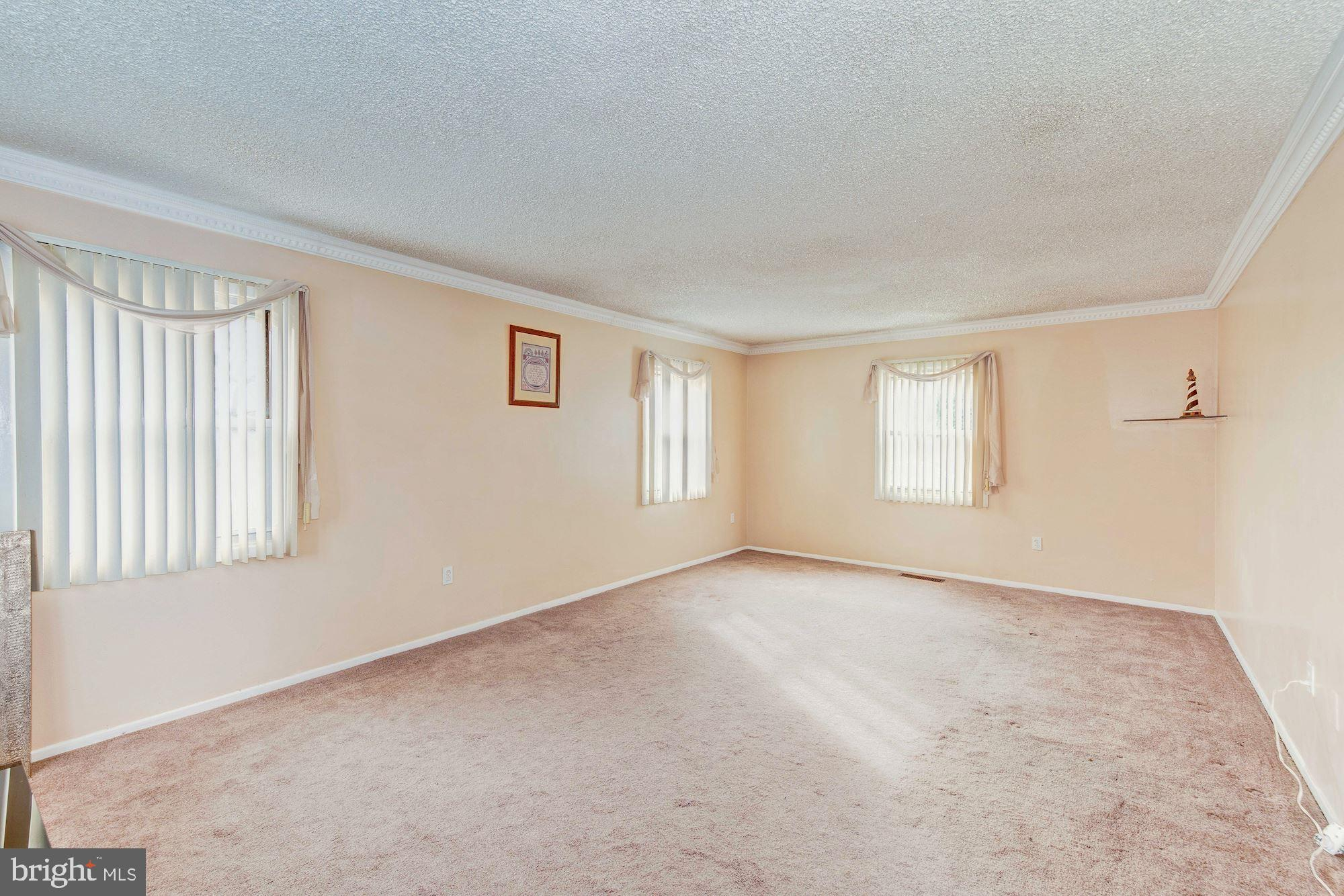 Living Room carpet and crown molding
