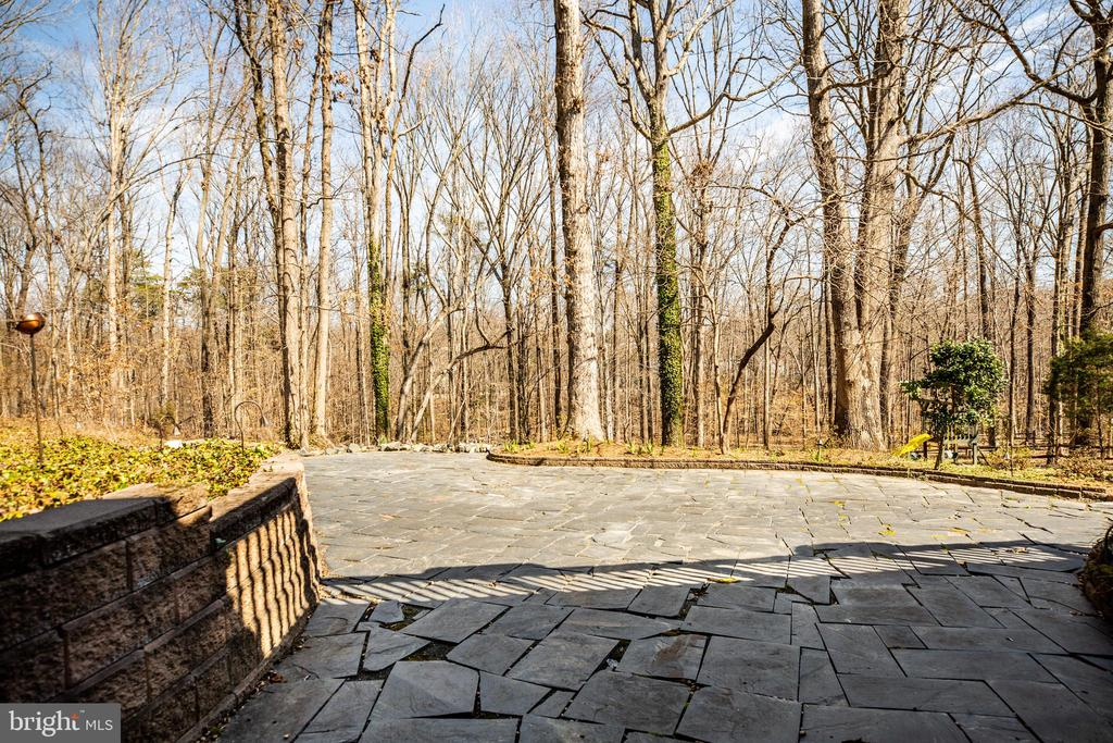 Large slate patio for entertaining! - 609 LANCASTER ST, FREDERICKSBURG