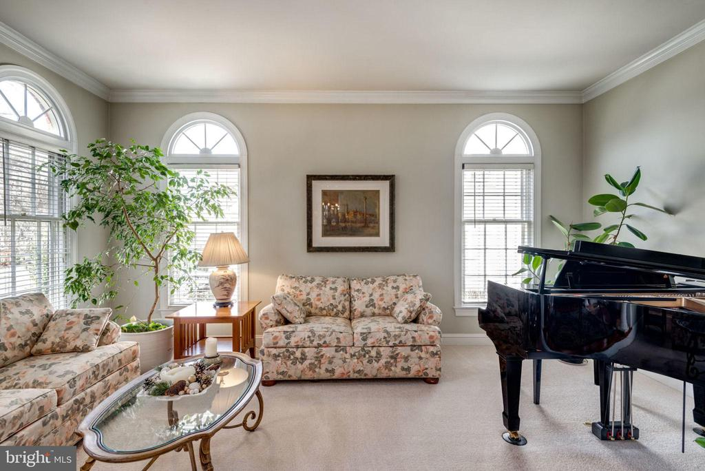 Living room is bright and spacious - 11261 CENTER HARBOR RD, RESTON