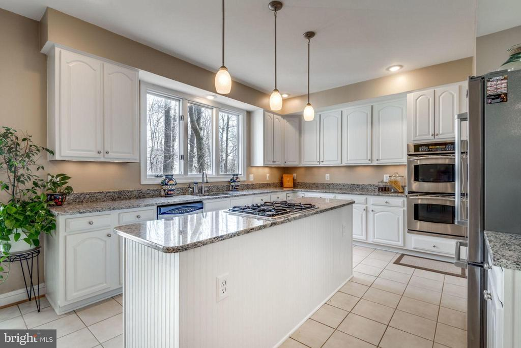 Granite, SS appliances and white cabinets - 11261 CENTER HARBOR RD, RESTON