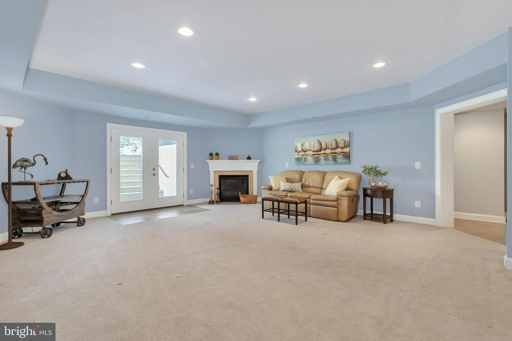 Recreation Room  with Fireplace - Lower Level - 41244 GRENATA PRESERVE PL, LEESBURG