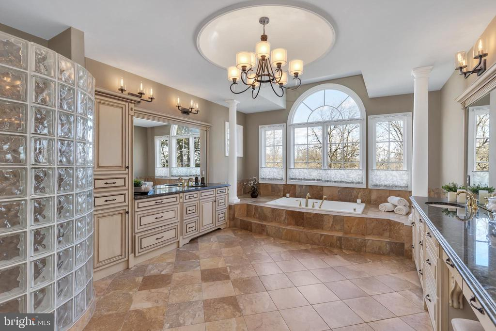 Master Bathroom - 41244 GRENATA PRESERVE PL, LEESBURG