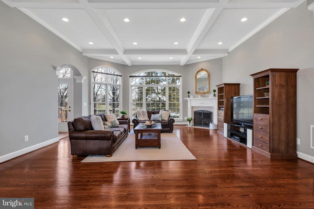Gorgeous Family Room with Wood Burning Fireplace - 41244 GRENATA PRESERVE PL, LEESBURG