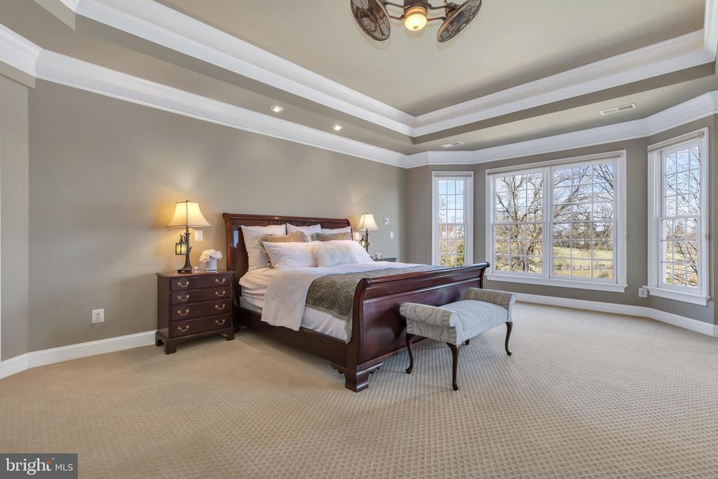 Master Bedroom - 41244 GRENATA PRESERVE PL, LEESBURG