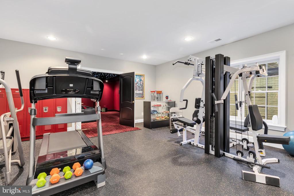 Exercise Room- Lower Level - 41244 GRENATA PRESERVE PL, LEESBURG