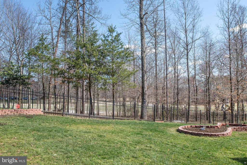 Aluminum fence with gate opening to golf course. - 3 GRISTMILL DR, STAFFORD