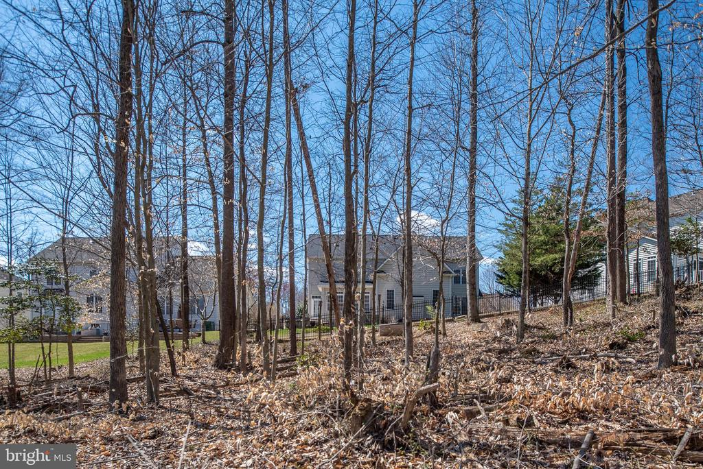 Tree line for extra privacy! - 3 GRISTMILL DR, STAFFORD