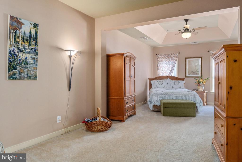 Master w/ tray ceiling & Ceiling fan, sitting room - 3 GRISTMILL DR, STAFFORD