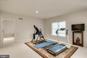 9 foot ceilings on lower level - 8938 RHODODENDRON CIRCLE CIR, LORTON