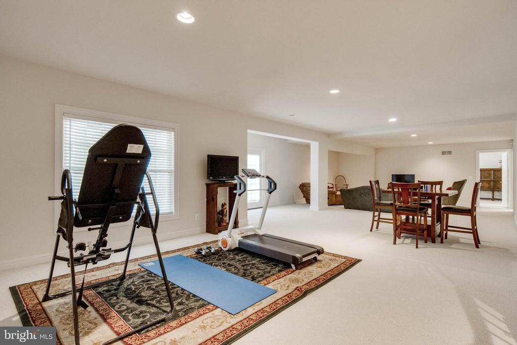 Over 2500 square feet on walk-out lower level - 8938 RHODODENDRON CIRCLE CIR, LORTON
