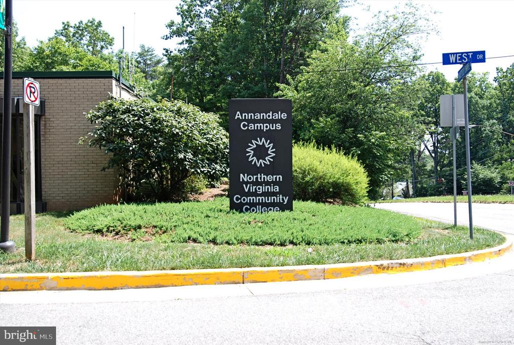 Surrounding Community - 8312 CHARTWELL CT, ANNANDALE