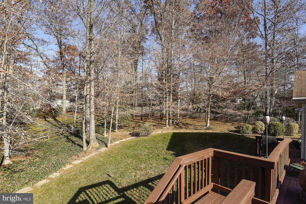 Back yard tree border - 8312 CHARTWELL CT, ANNANDALE