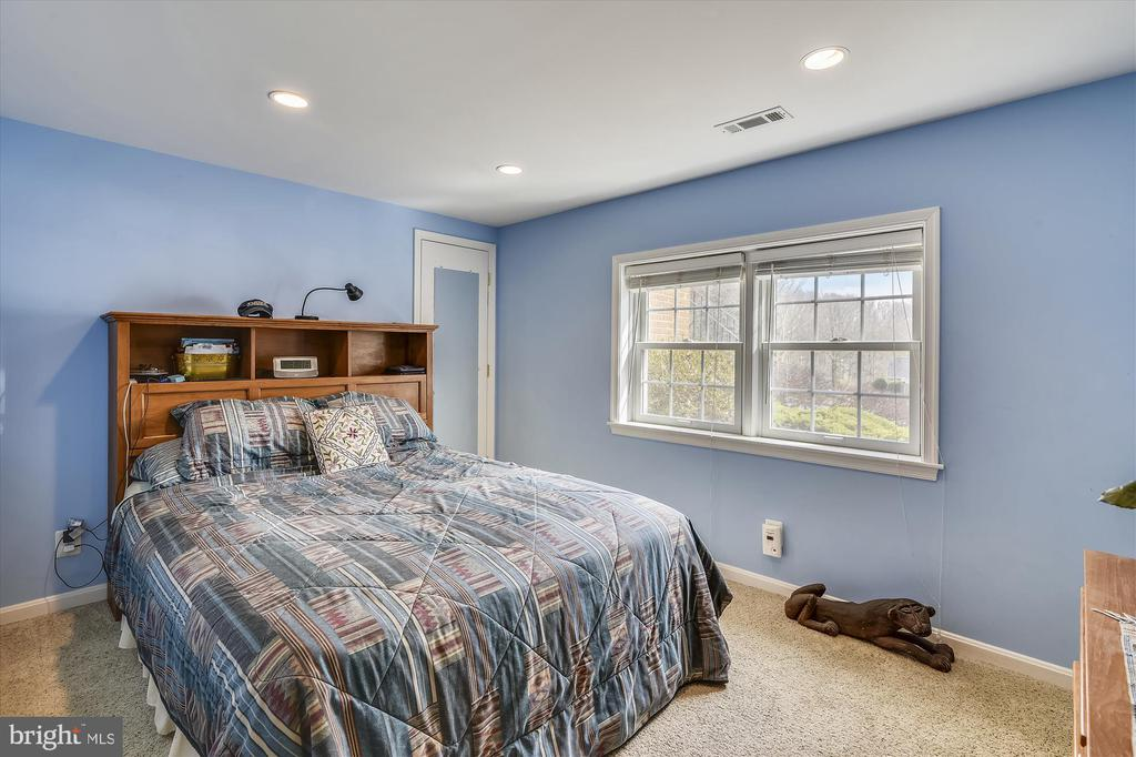 Lower Level 5th Bedroom w/ walk in closet - 8312 CHARTWELL CT, ANNANDALE
